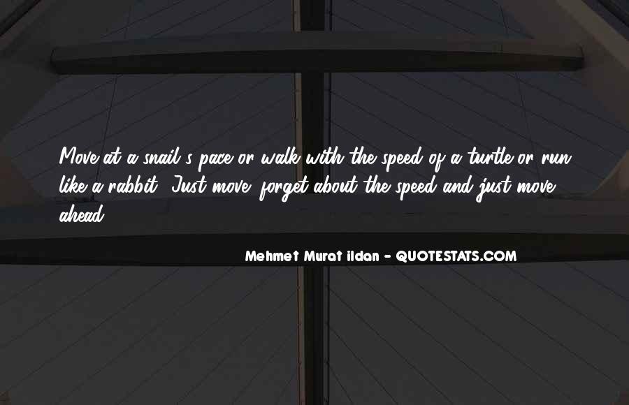 Quinn Allman Quotes #1543430