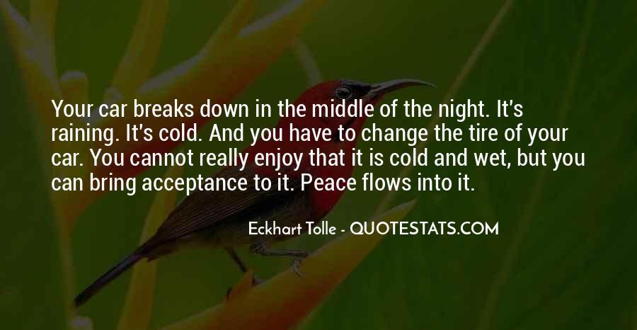 Rain In The Night Quotes #398604