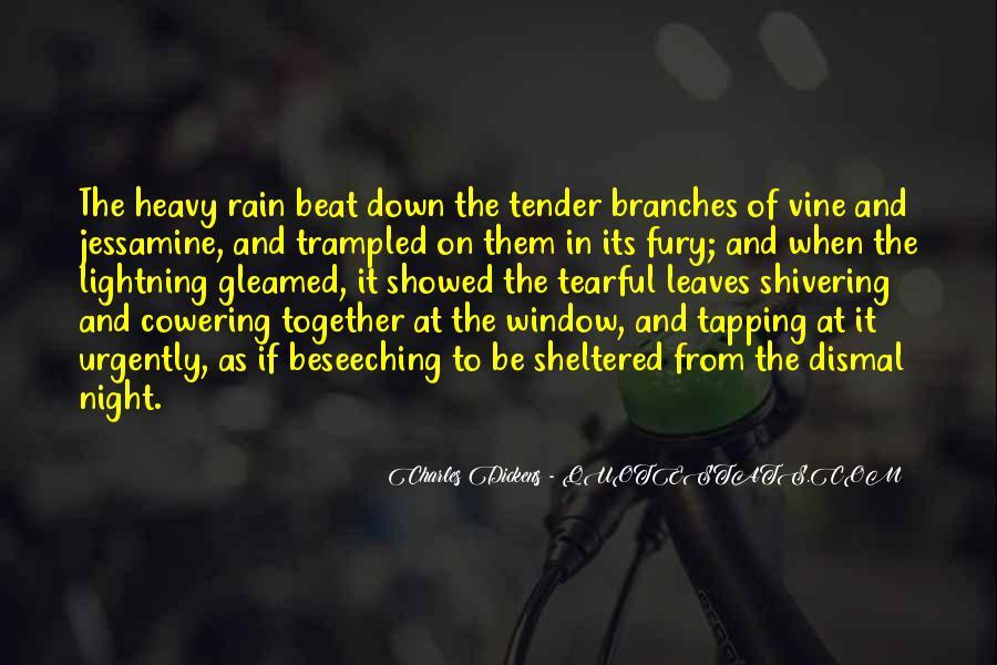 Rain In The Night Quotes #642079