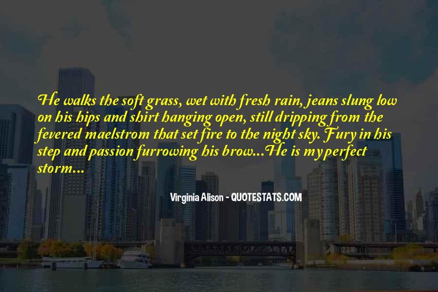 Rain In The Night Quotes #952361