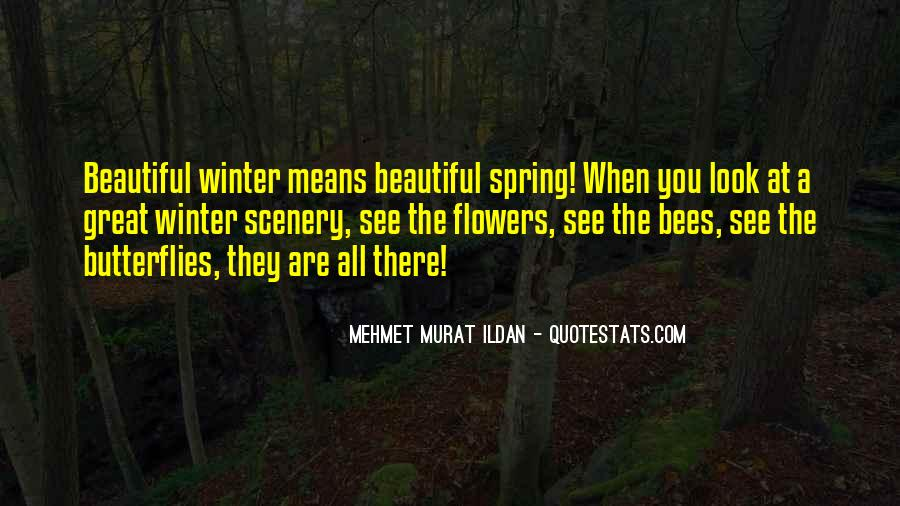 Quotes About Beautiful Scenery #297775