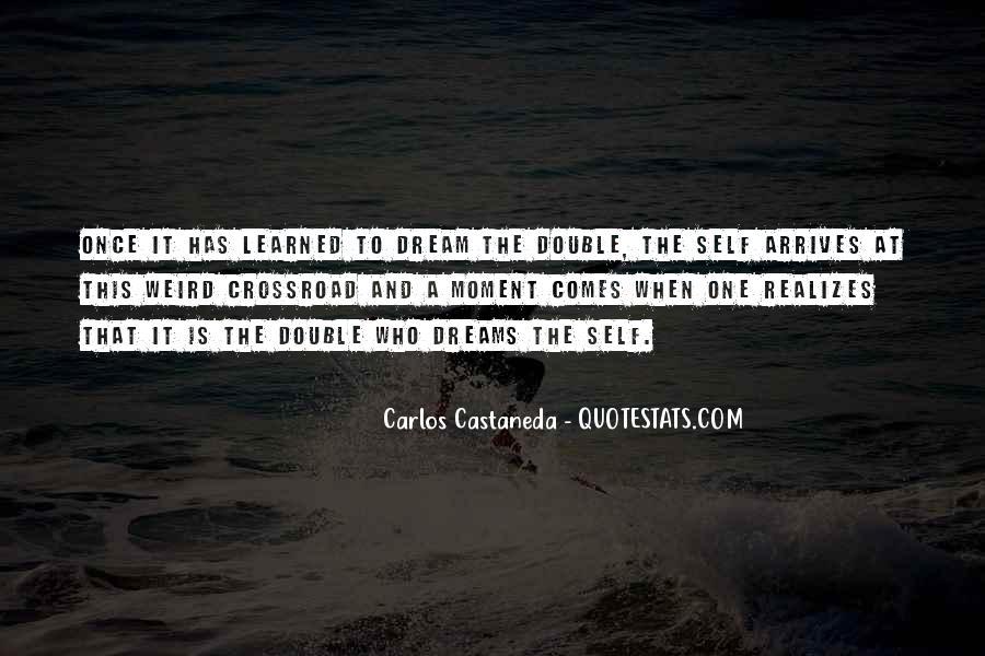 Realizing Dream Quotes #333601