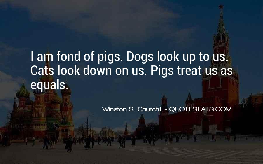 Respect The Animals Quotes #1083032
