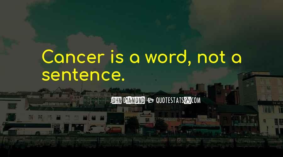 Ribhu Gita Quotes #1158534