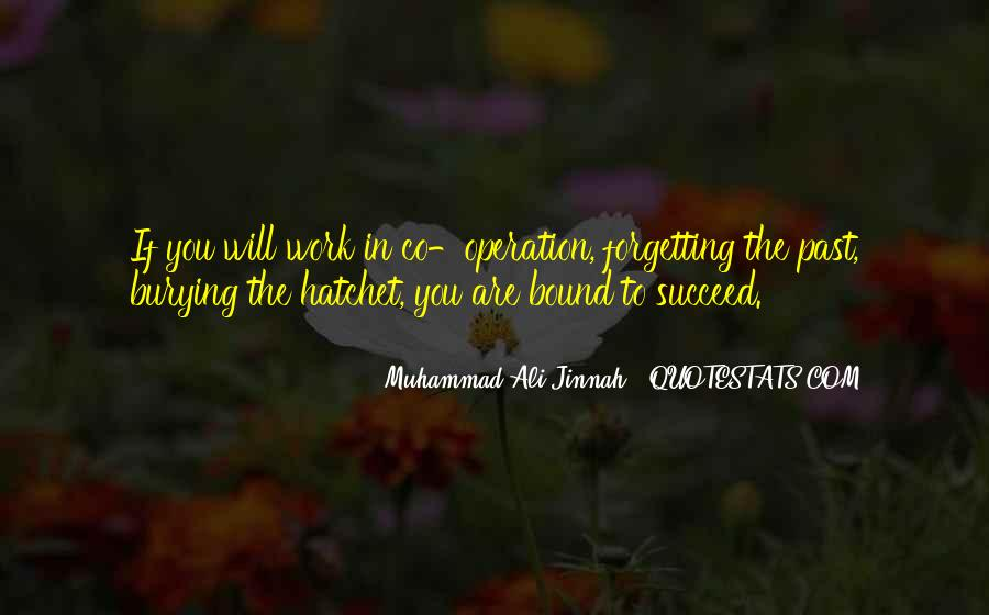 Quotes About Muhammad Ali #208421
