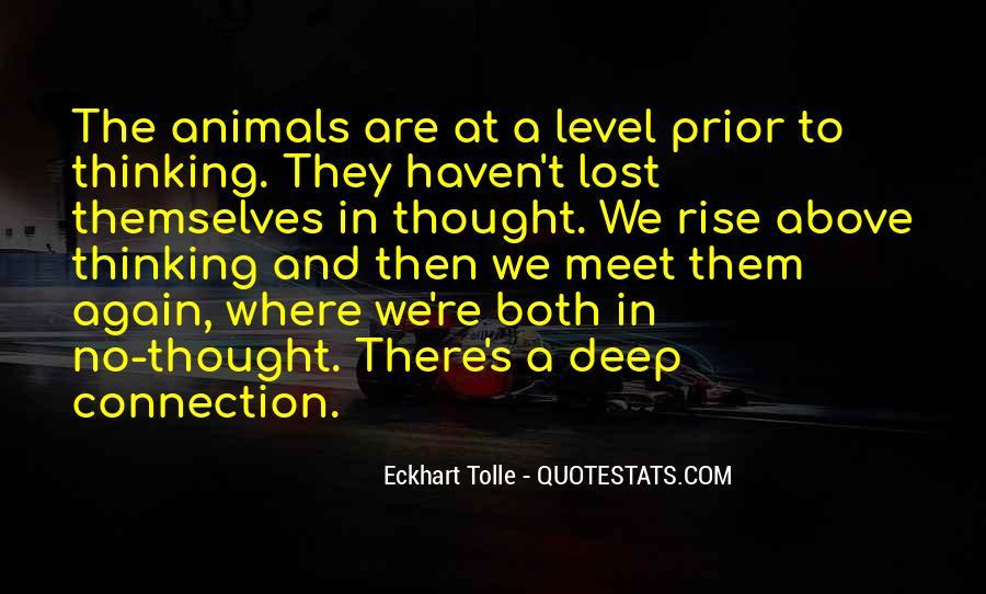 Rise Again Quotes #359878