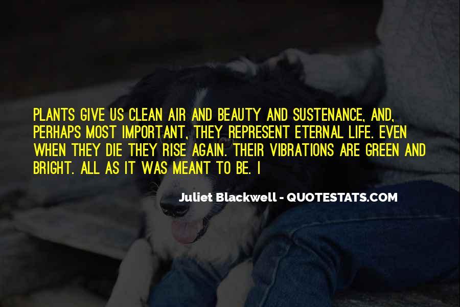 Rise Again Quotes #594928