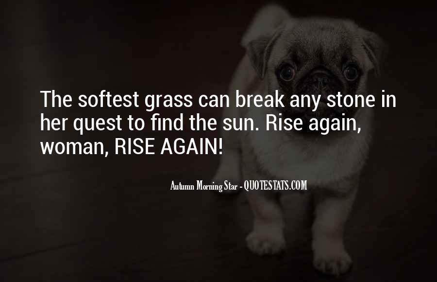 Rise Again Quotes #606649