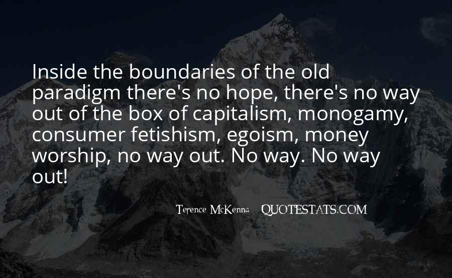 Quotes About Terence Mckenna #161019