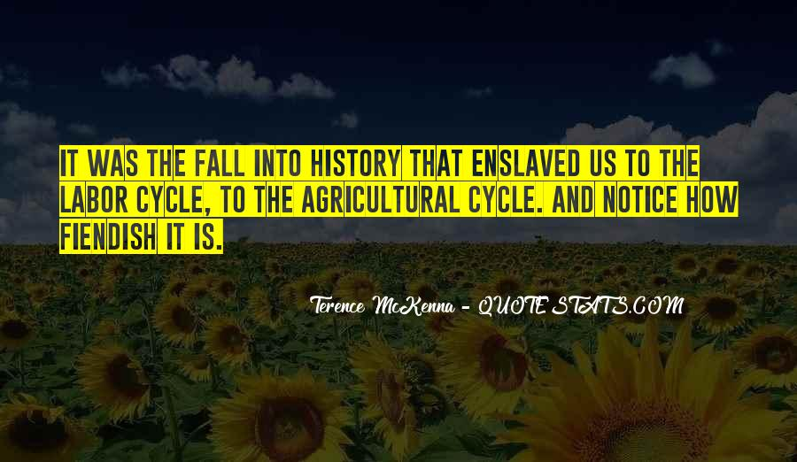 Quotes About Terence Mckenna #24202