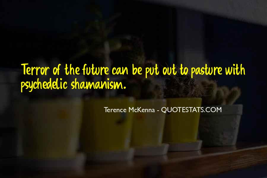 Quotes About Terence Mckenna #242462