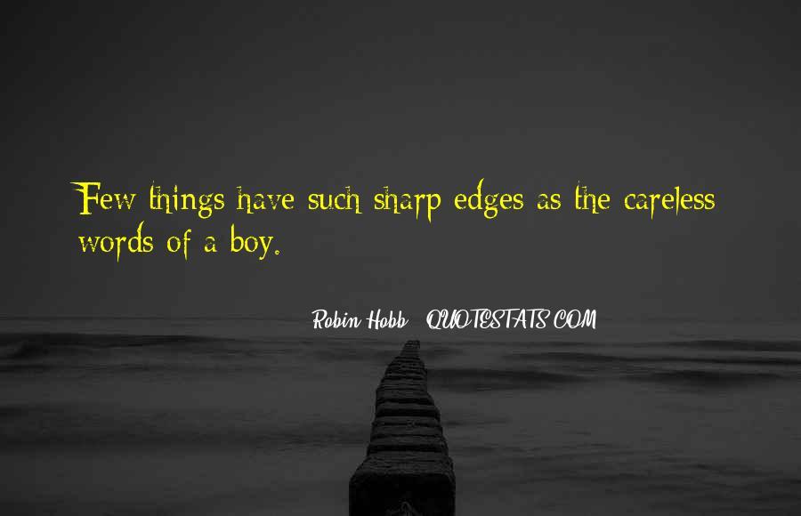 Robin The Wonder Boy Quotes #243951
