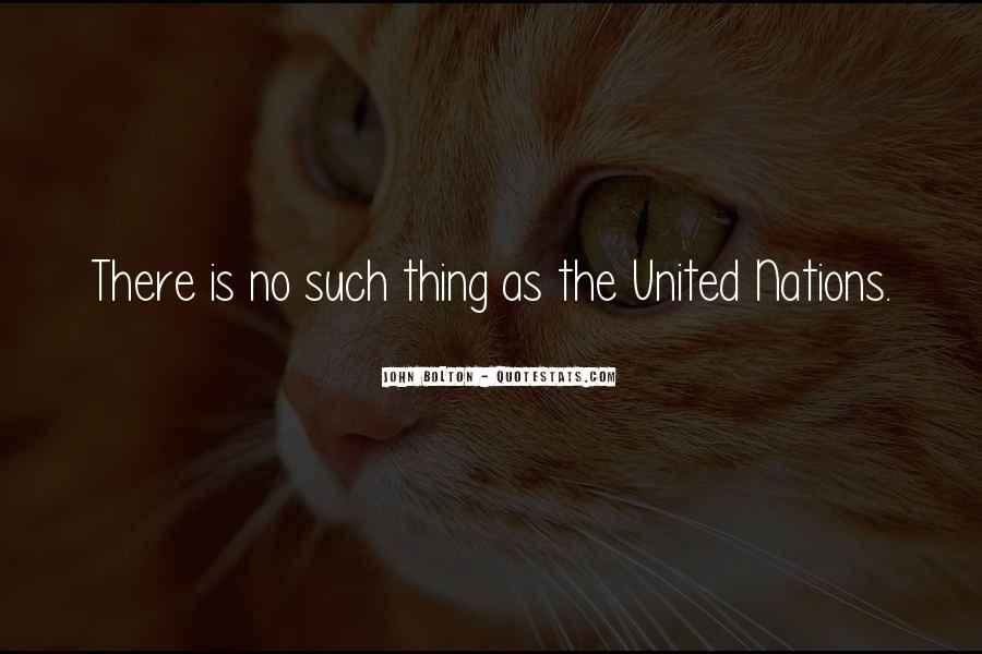 Quotes About United Nations #173318
