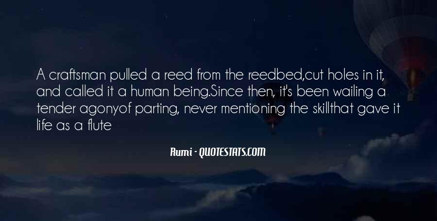Rumi's Quotes #150317