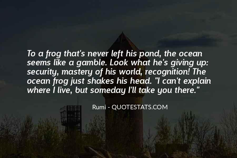 Rumi's Quotes #174527