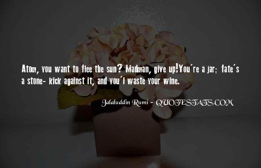 Rumi's Quotes #792151