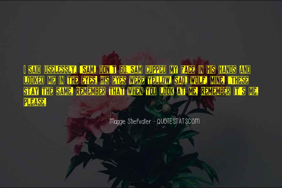 Sadness In His Eyes Quotes #1271034