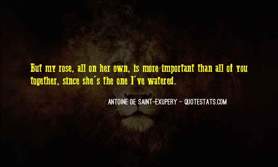 Saint Maybe Important Quotes #1586272