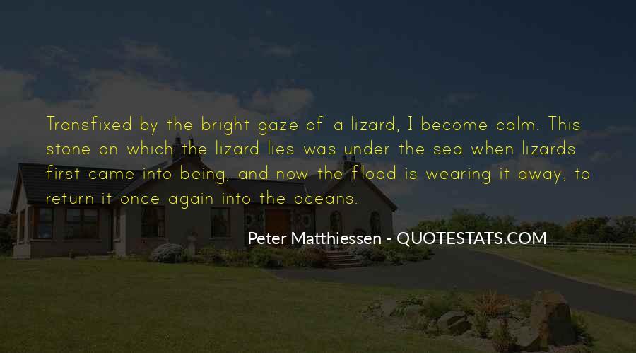 Sea Stone Quotes #1178861