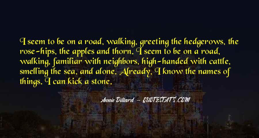 Sea Stone Quotes #588491