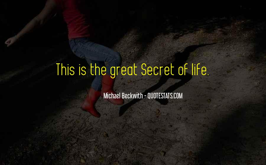 Secret Law Of Attraction Quotes #588254