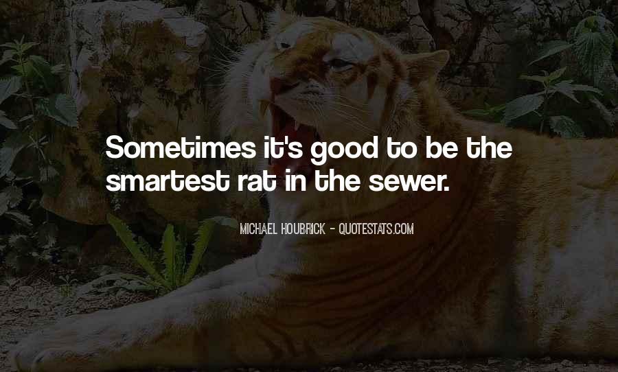 Sewer Rat Quotes #1044322
