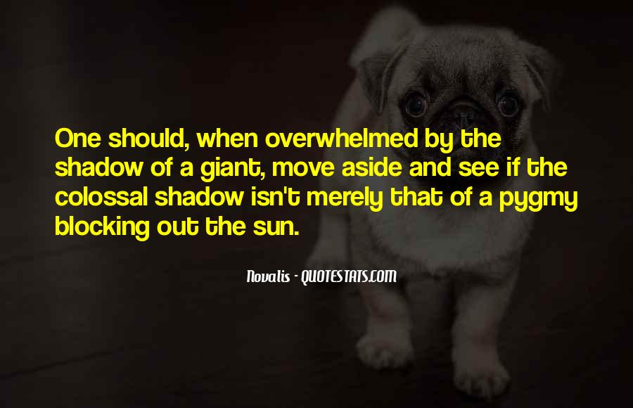 Shadow Sun Quotes #1010100