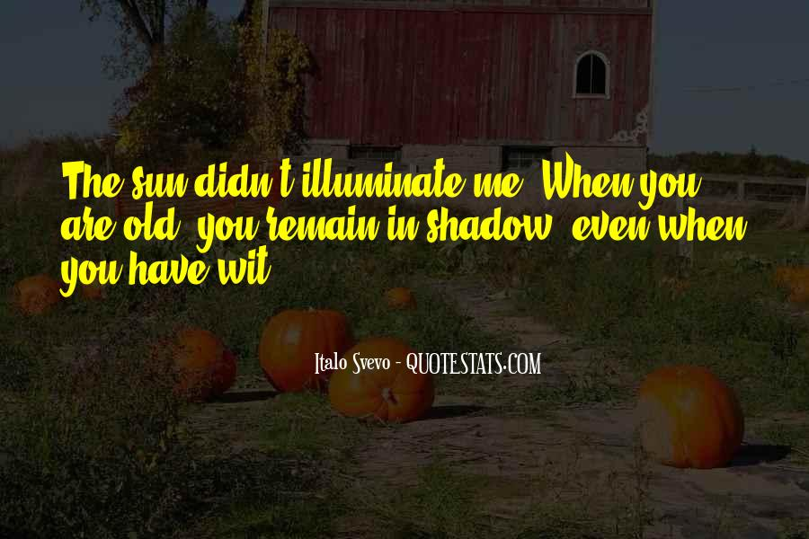 Shadow Sun Quotes #1573008