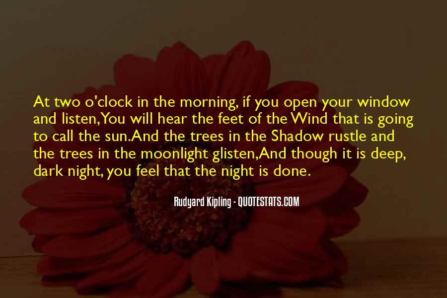 Shadow Sun Quotes #1772