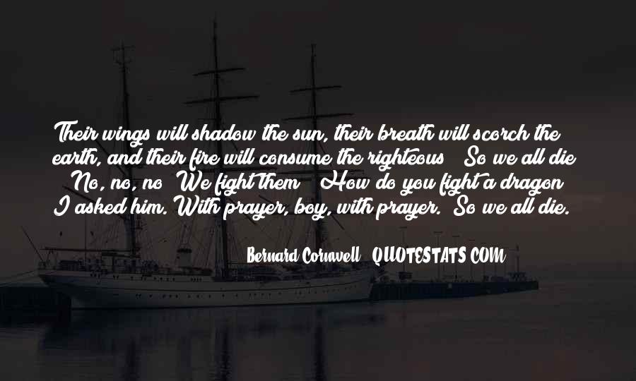 Shadow Sun Quotes #955999