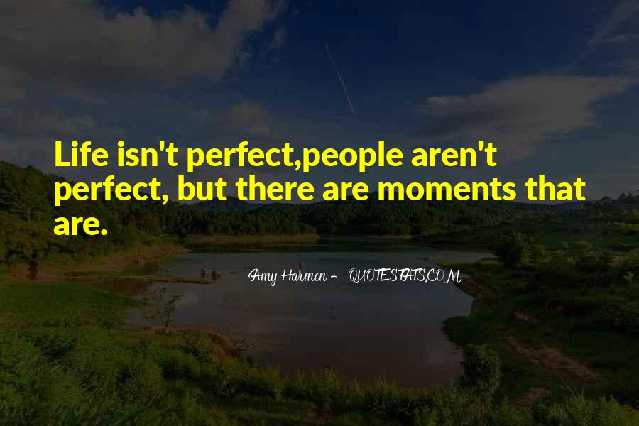 She Isn't Perfect Quotes #16236