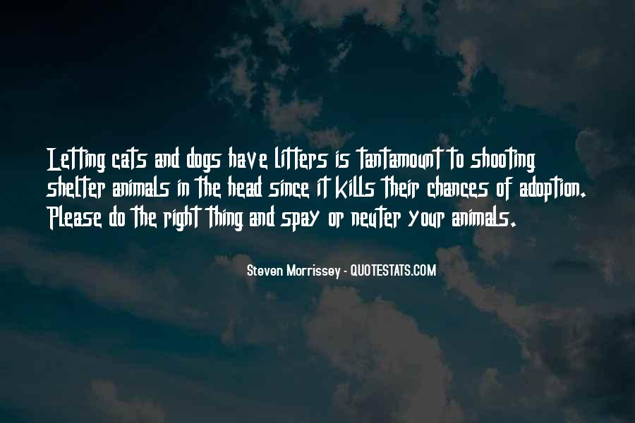 Shelter Adoption Quotes #291136
