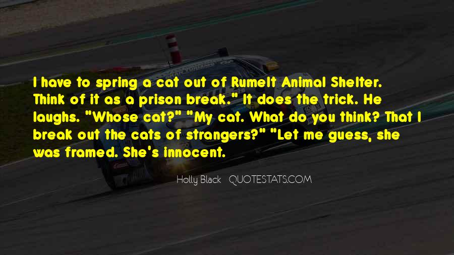 Shelter Cat Quotes #1546305