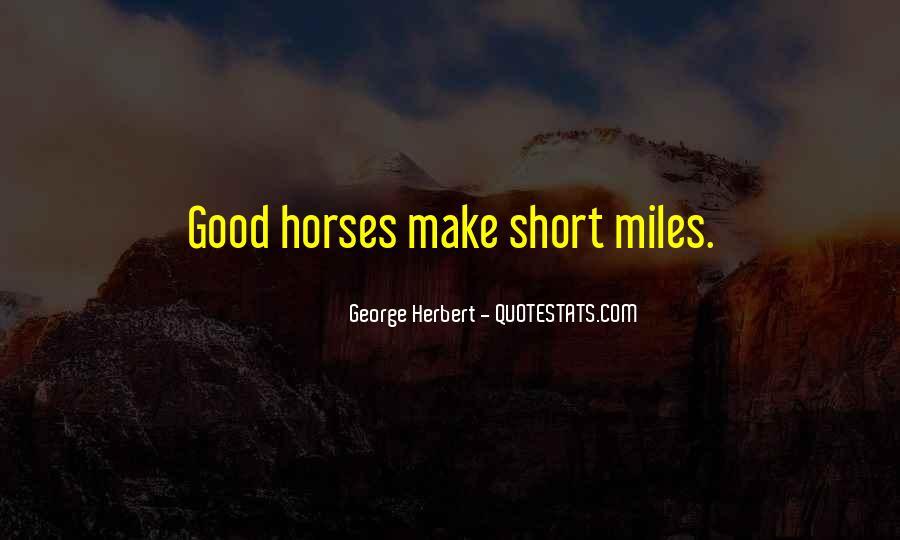 Short Horse Quotes #1002579