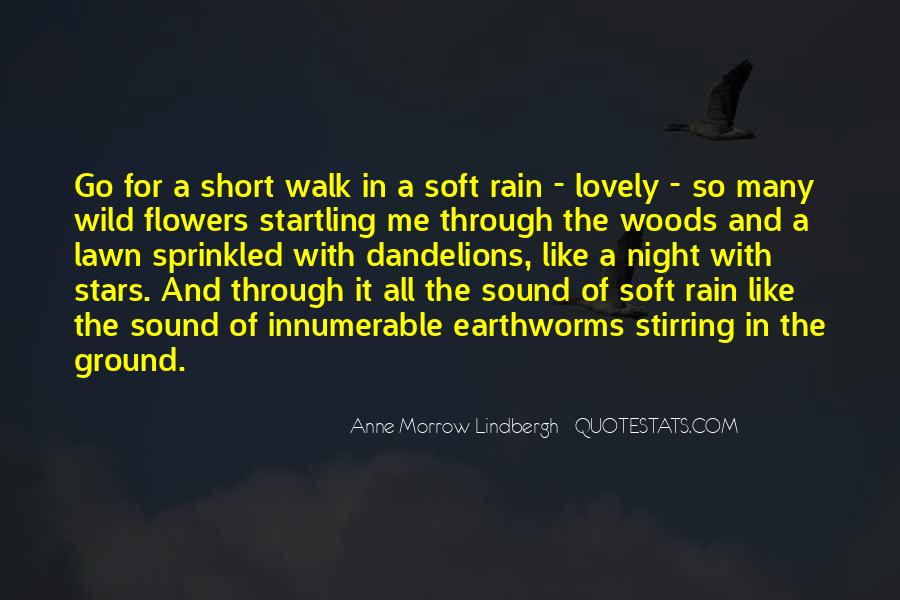 Short Soft Quotes #80440