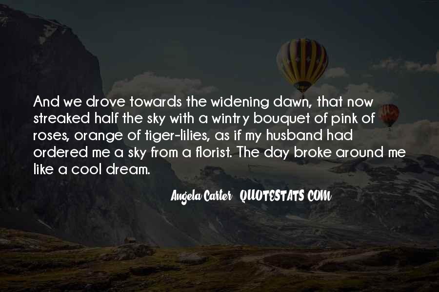 Sky Orange Quotes #1525416