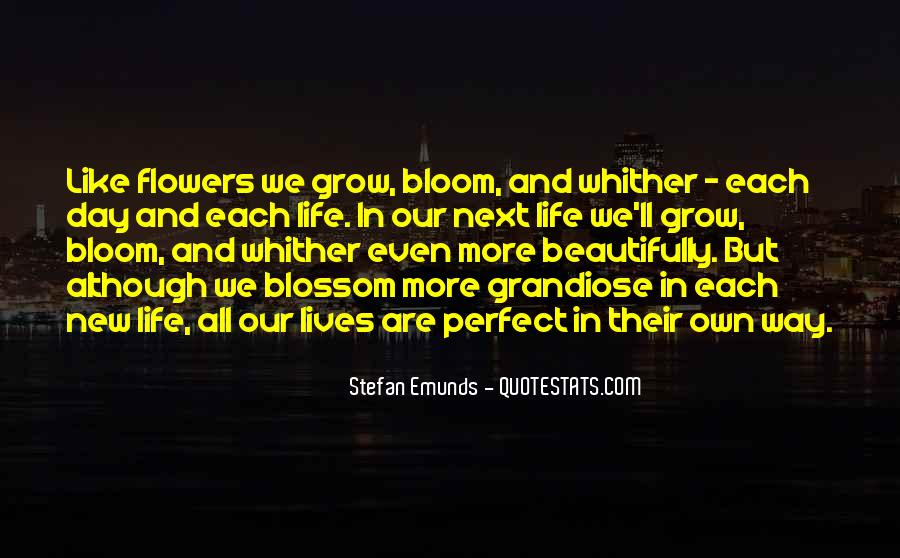 Quotes About Beautifully #189121