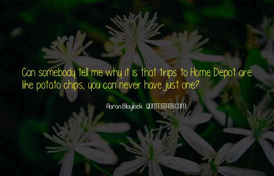 Somebody Tell Me Why Quotes #1566252