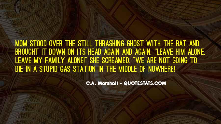 Quotes About Stupid Family #585886