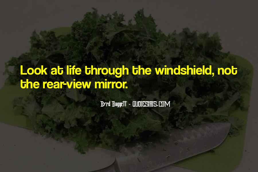 Sometimes I Look In The Mirror Quotes #5054