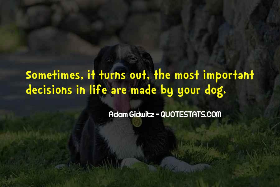 Sometimes In Your Life Quotes #135774