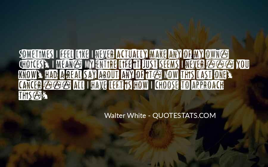 Sometimes It Seems Like Quotes #1869007