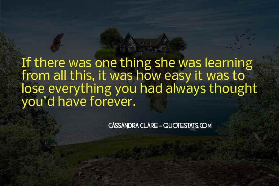 Sometimes You Have To Lose Everything Quotes #106921