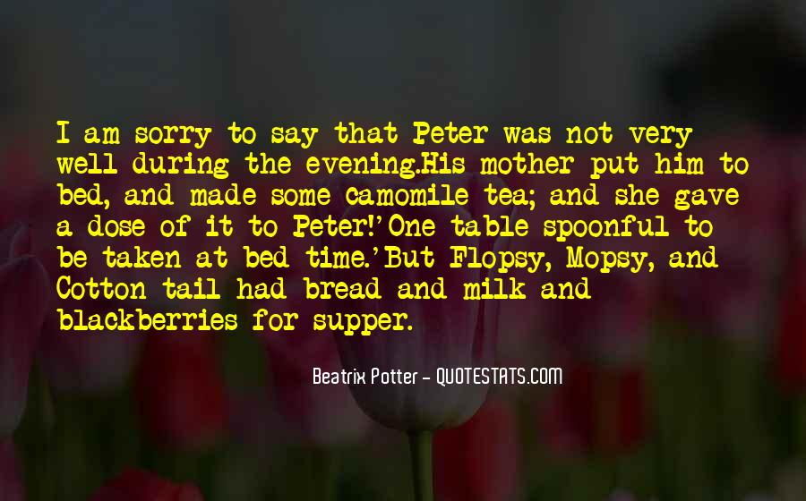 Sorry But Not Sorry Quotes #249967