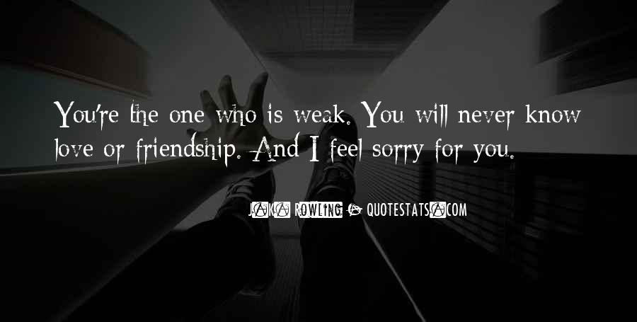 Sorry For Love You Quotes #919909