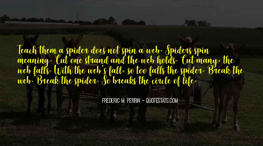 Spider's Web Quotes #398384