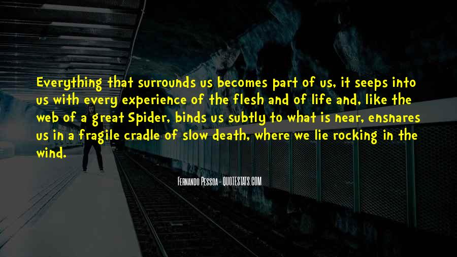 Spider's Web Quotes #47816