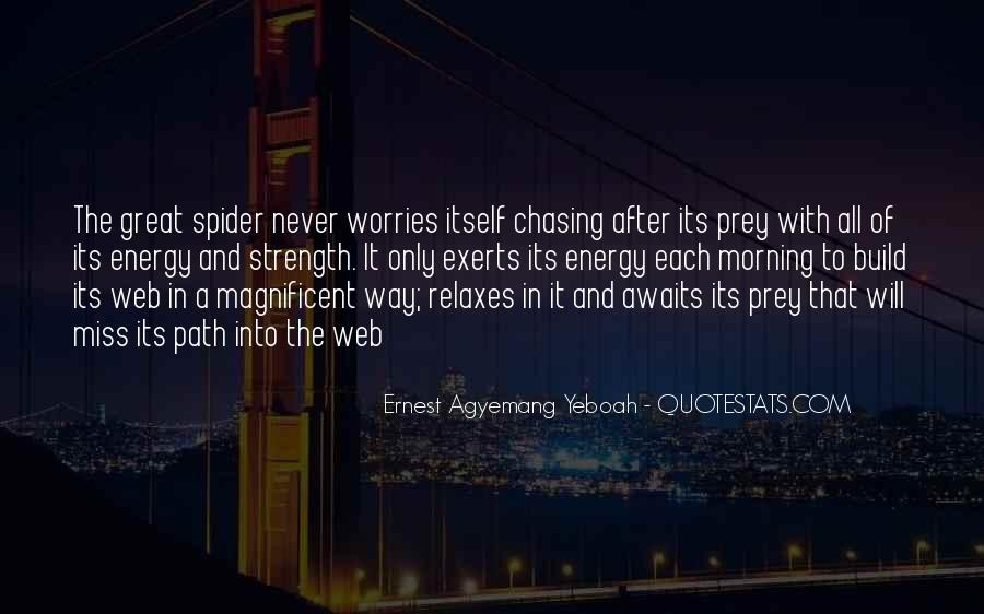 Spider's Web Quotes #616621