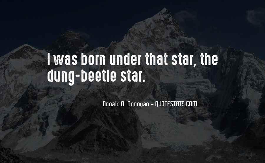 Star Born Quotes #978362