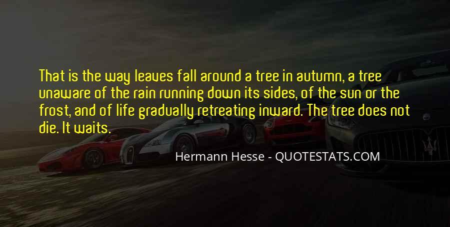 Quotes About Autumn Rain #1698097
